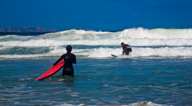 Surf's Up!: Thriving Amid Chaos
